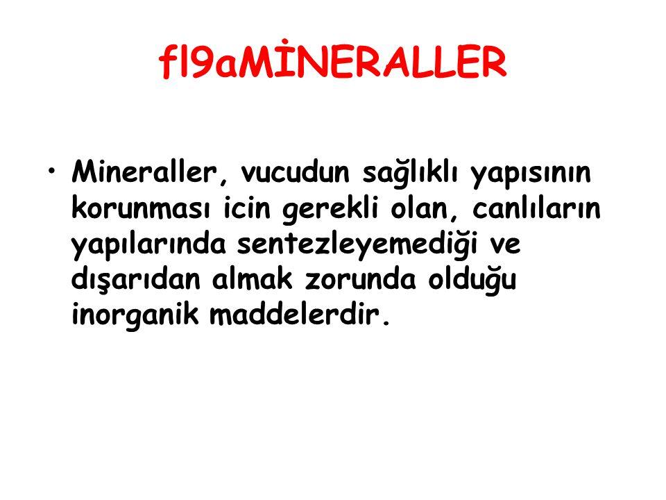 fl9aMİNERALLER