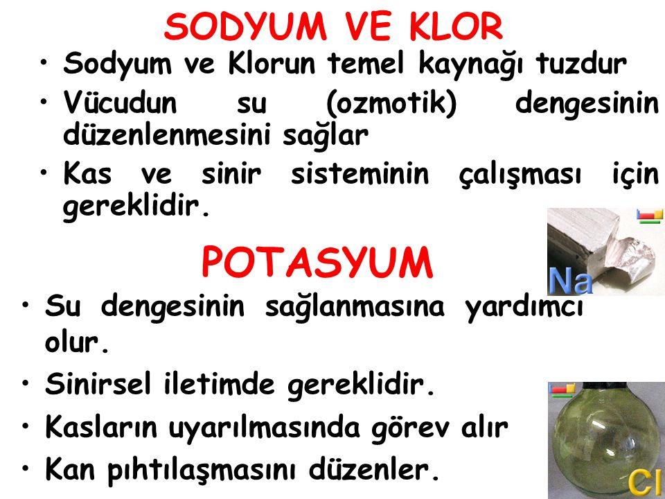 POTASYUM SODYUM VE KLOR Sodyum ve Klorun temel kaynağı tuzdur