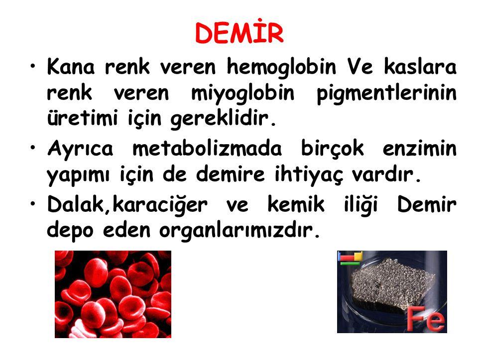 DEMİR Kana renk veren hemoglobin Ve kaslara renk veren miyoglobin pigmentlerinin üretimi için gereklidir.