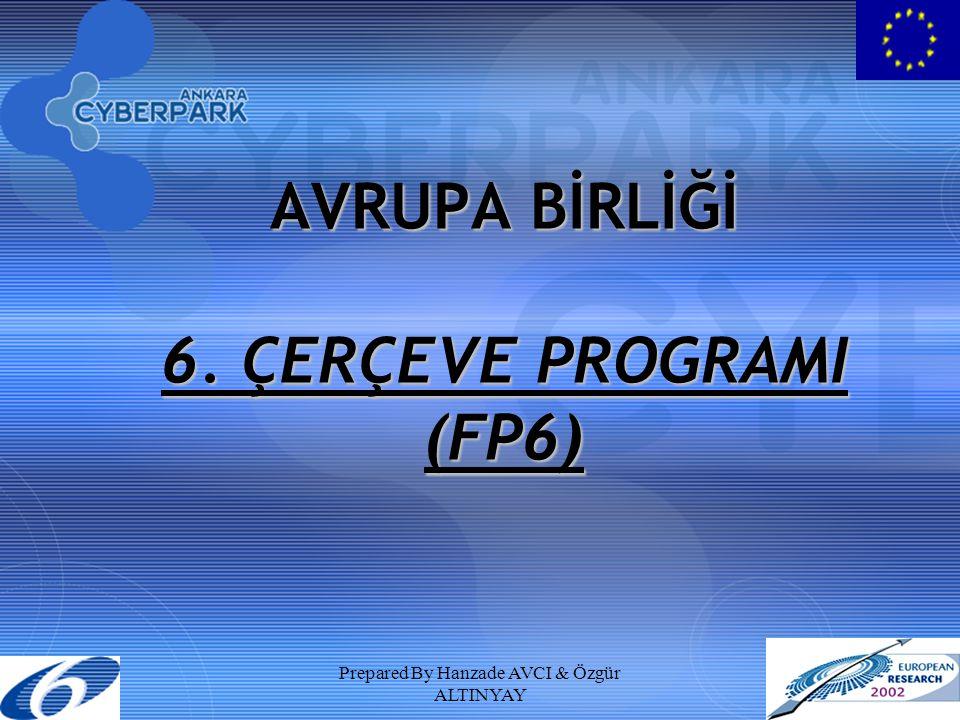 AVRUPA BİRLİĞİ 6. ÇERÇEVE PROGRAMI (FP6)