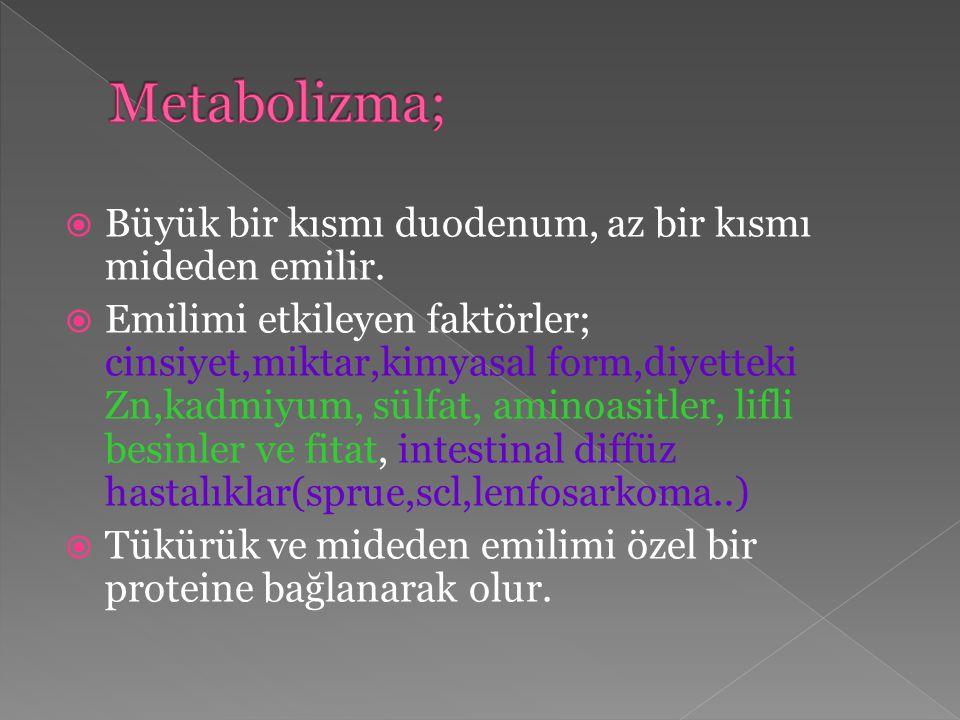 Metabolizma; Büyük bir kısmı duodenum, az bir kısmı mideden emilir.