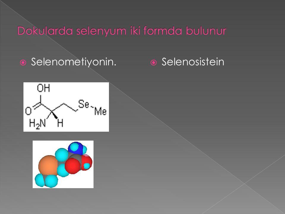 Dokularda selenyum iki formda bulunur