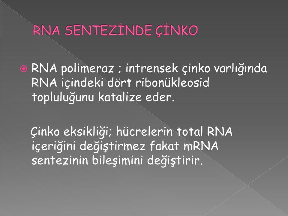 RNA SENTEZİNDE ÇİNKO RNA polimeraz ; intrensek çinko varlığında RNA içindeki dört ribonükleosid topluluğunu katalize eder.