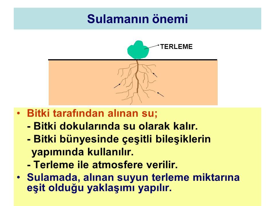 Sulamanın önemi Bitki tarafından alınan su;
