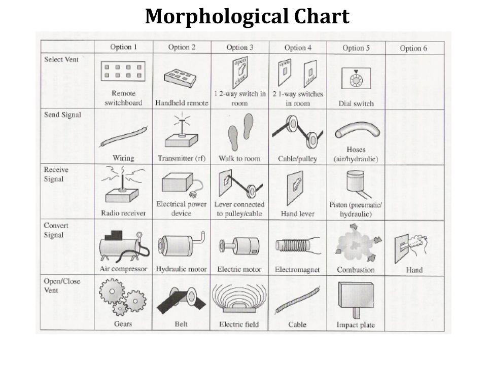 Morphological Chart