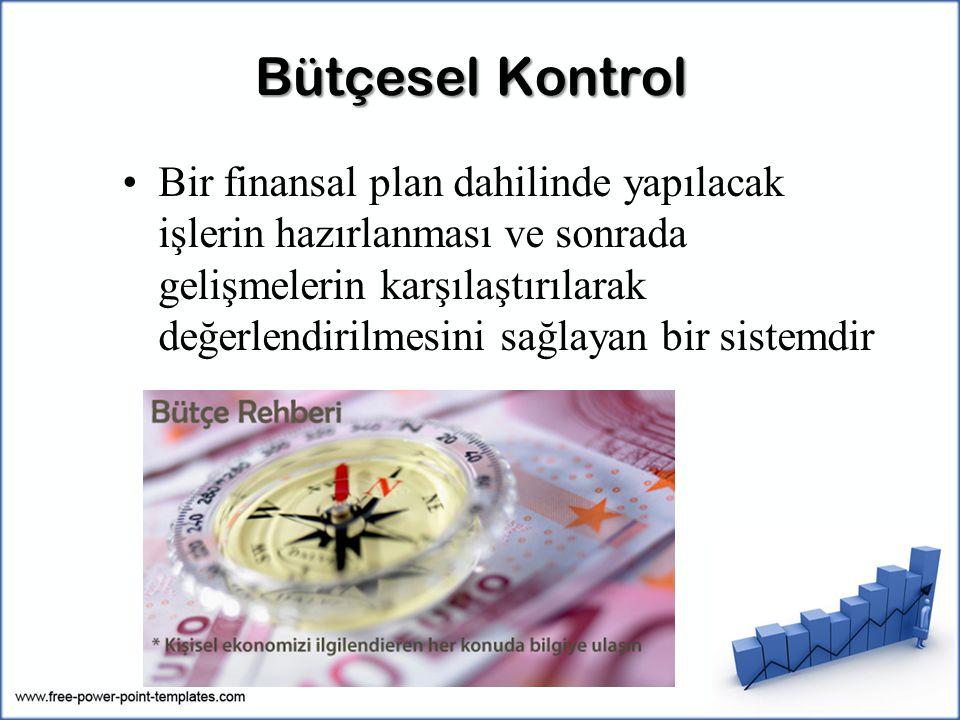 Bütçesel Kontrol