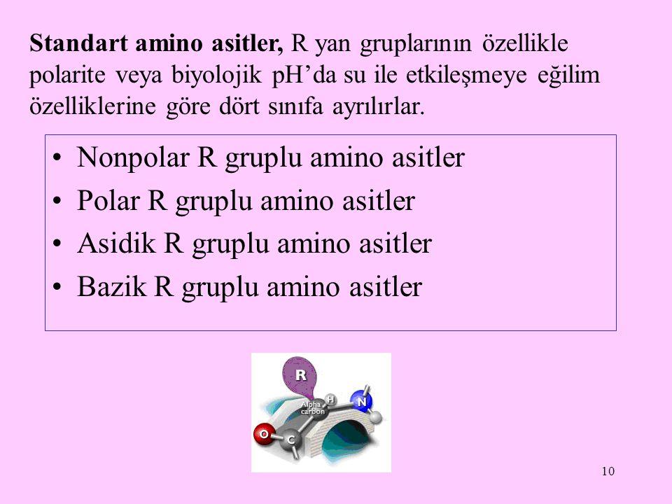 Nonpolar R gruplu amino asitler Polar R gruplu amino asitler