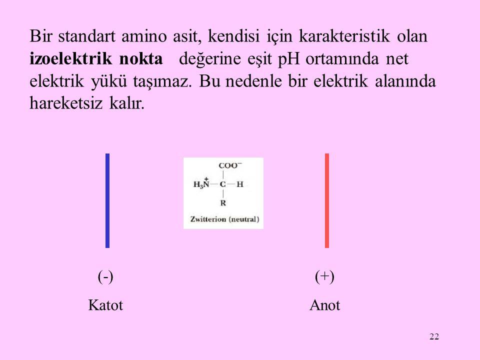 Bir standart amino asit, kendisi için karakteristik olan izoelektrik nokta değerine eşit pH ortamında net elektrik yükü taşımaz. Bu nedenle bir elektrik alanında hareketsiz kalır.