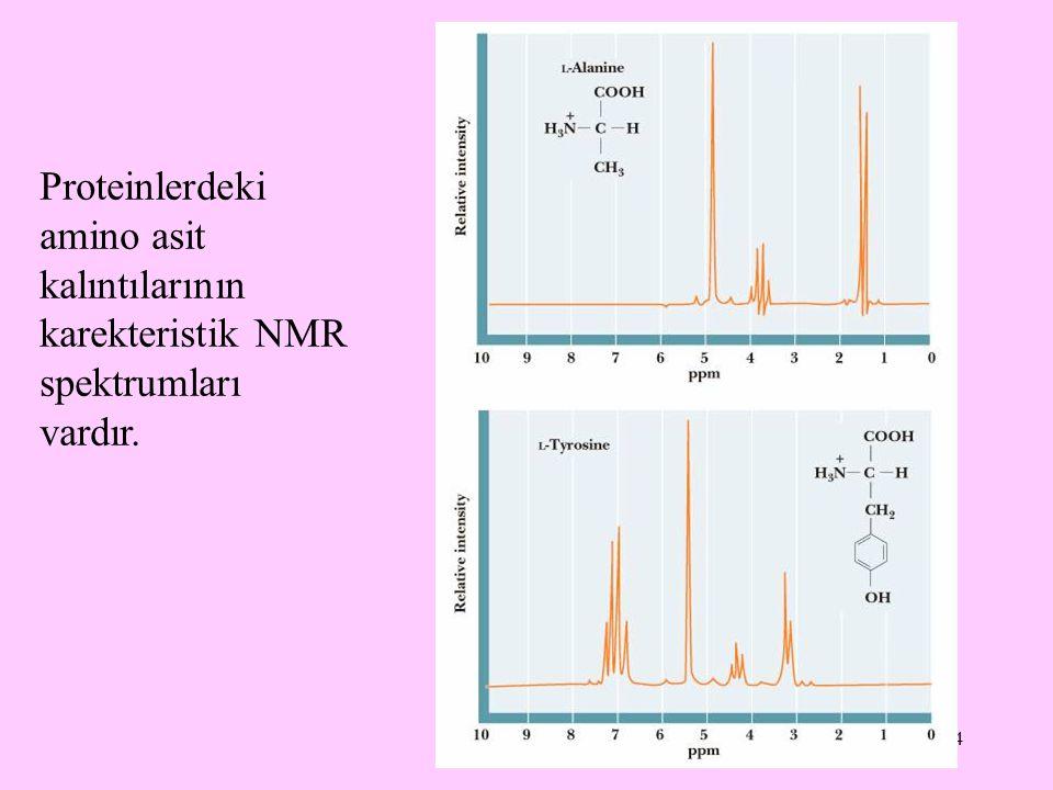 Proteinlerdeki amino asit kalıntılarının karekteristik NMR spektrumları vardır.