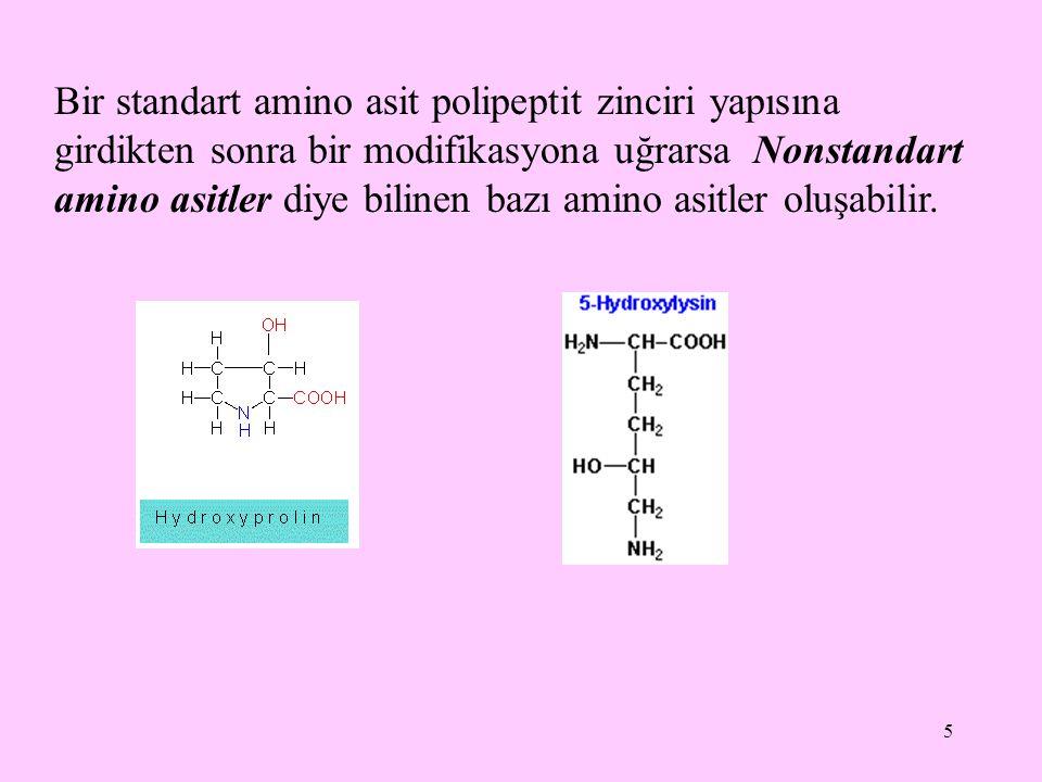 Bir standart amino asit polipeptit zinciri yapısına girdikten sonra bir modifikasyona uğrarsa Nonstandart amino asitler diye bilinen bazı amino asitler oluşabilir.