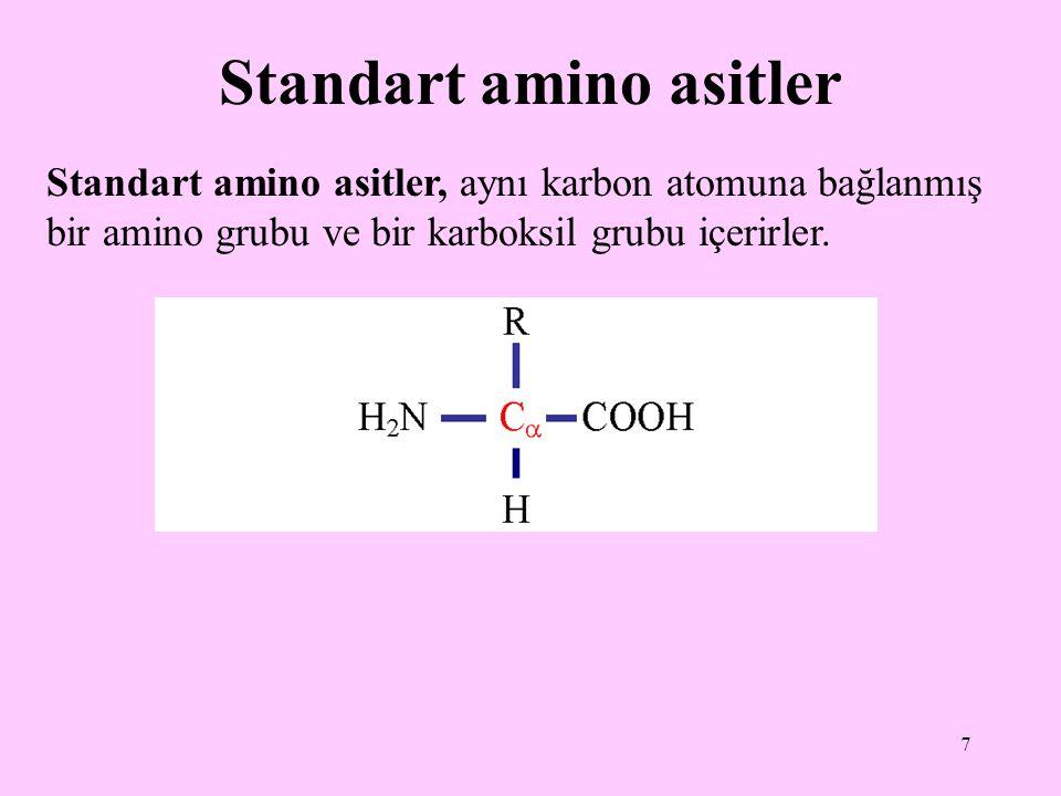 Standart amino asitler