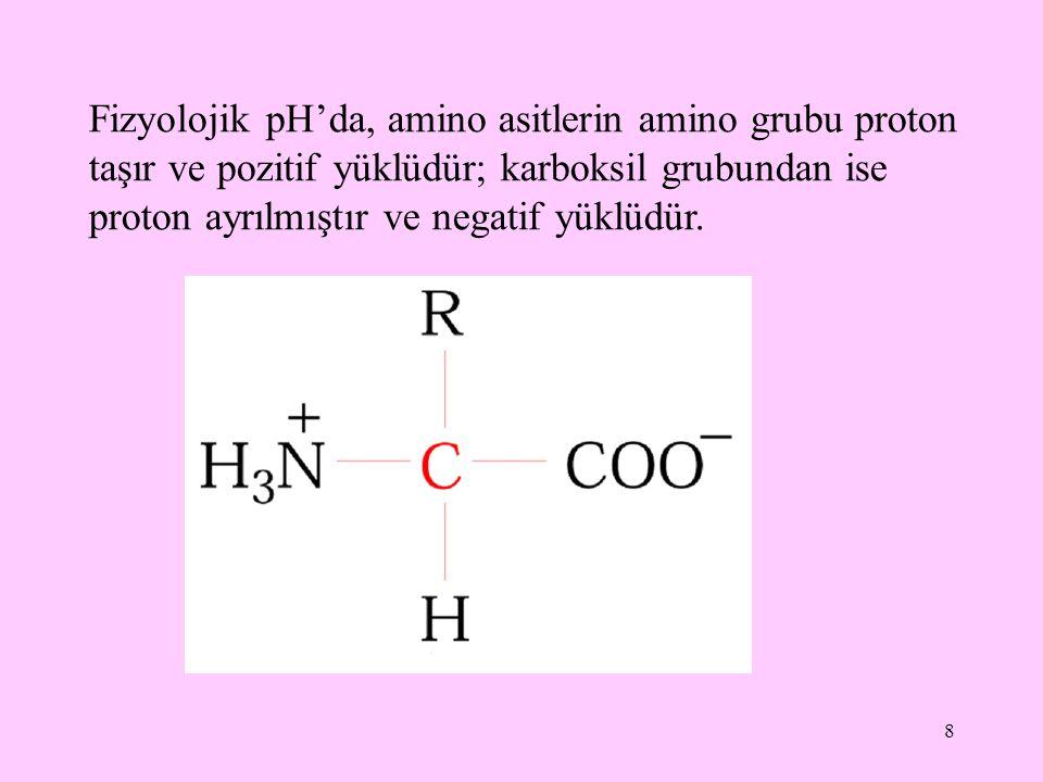 Fizyolojik pH'da, amino asitlerin amino grubu proton taşır ve pozitif yüklüdür; karboksil grubundan ise proton ayrılmıştır ve negatif yüklüdür.