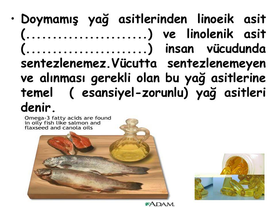 Doymamış yağ asitlerinden linoeik asit (. ) ve linolenik asit (