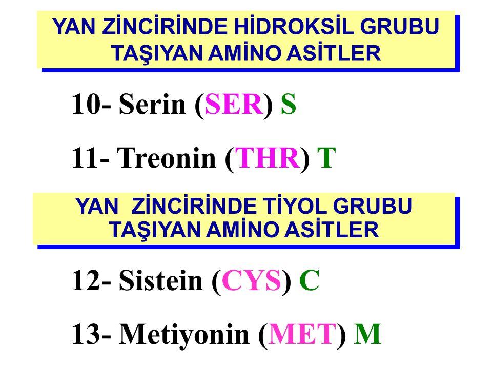 10- Serin (SER) S 11- Treonin (THR) T 12- Sistein (CYS) C