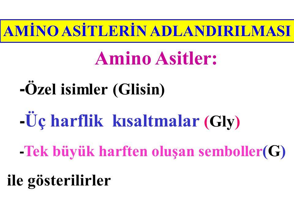 -Özel isimler (Glisin) -Üç harflik kısaltmalar (Gly)