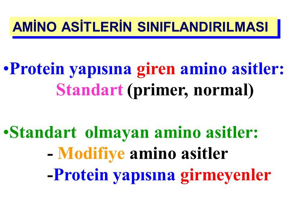 Protein yapısına giren amino asitler: Standart (primer, normal)