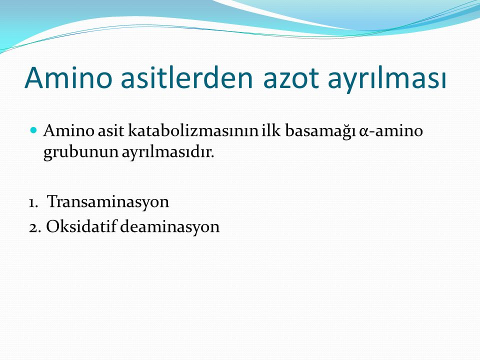 Amino asitlerden azot ayrılması