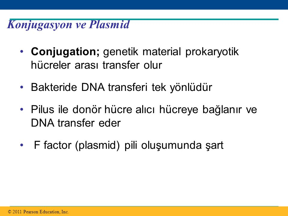 Konjugasyon ve Plasmid