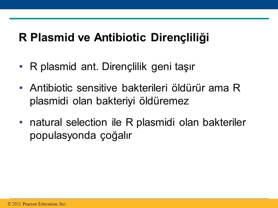 R Plasmid ve Antibiotic Dirençliliği