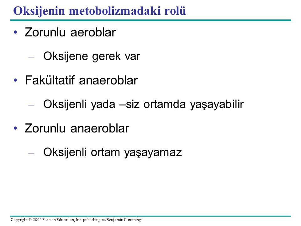 Oksijenin metobolizmadaki rolü