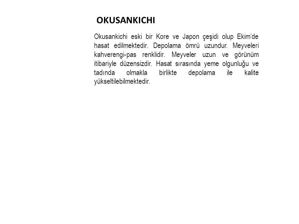 OKUSANKICHI