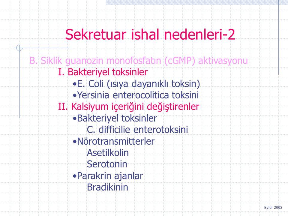 Sekretuar ishal nedenleri-2