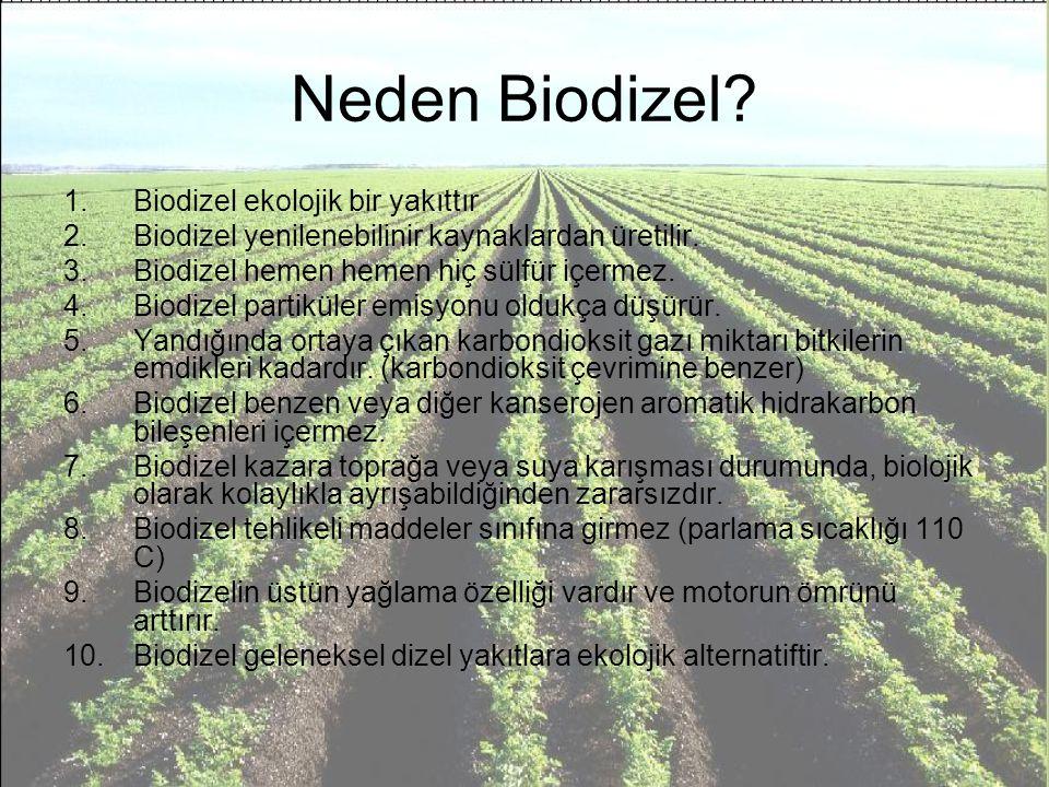 Neden Biodizel Biodizel ekolojik bir yakıttır
