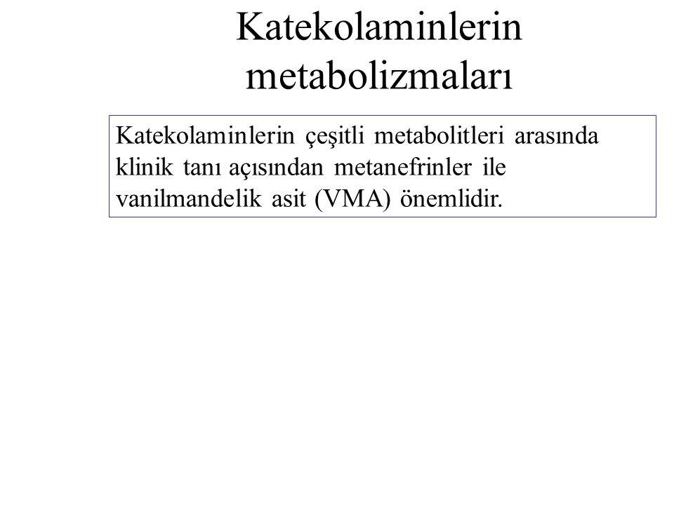 Katekolaminlerin metabolizmaları