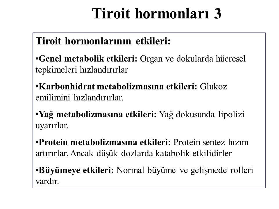 Tiroit hormonları 3 Tiroit hormonlarının etkileri: