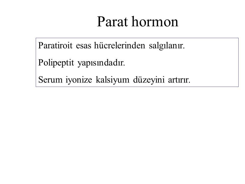 Parat hormon Paratiroit esas hücrelerinden salgılanır.