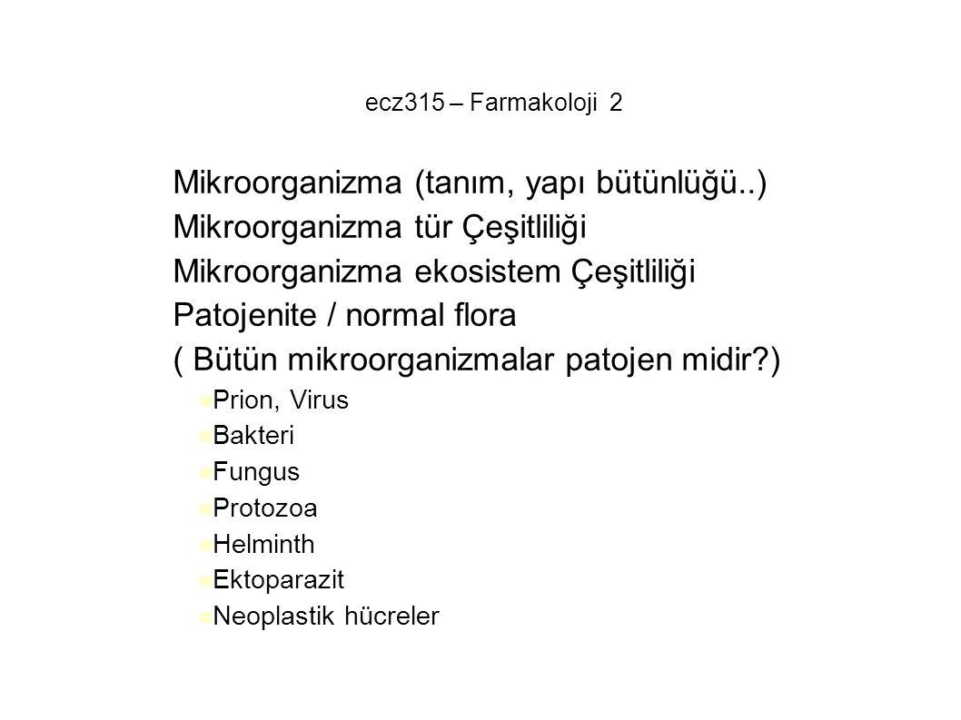 Mikroorganizma (tanım, yapı bütünlüğü..)