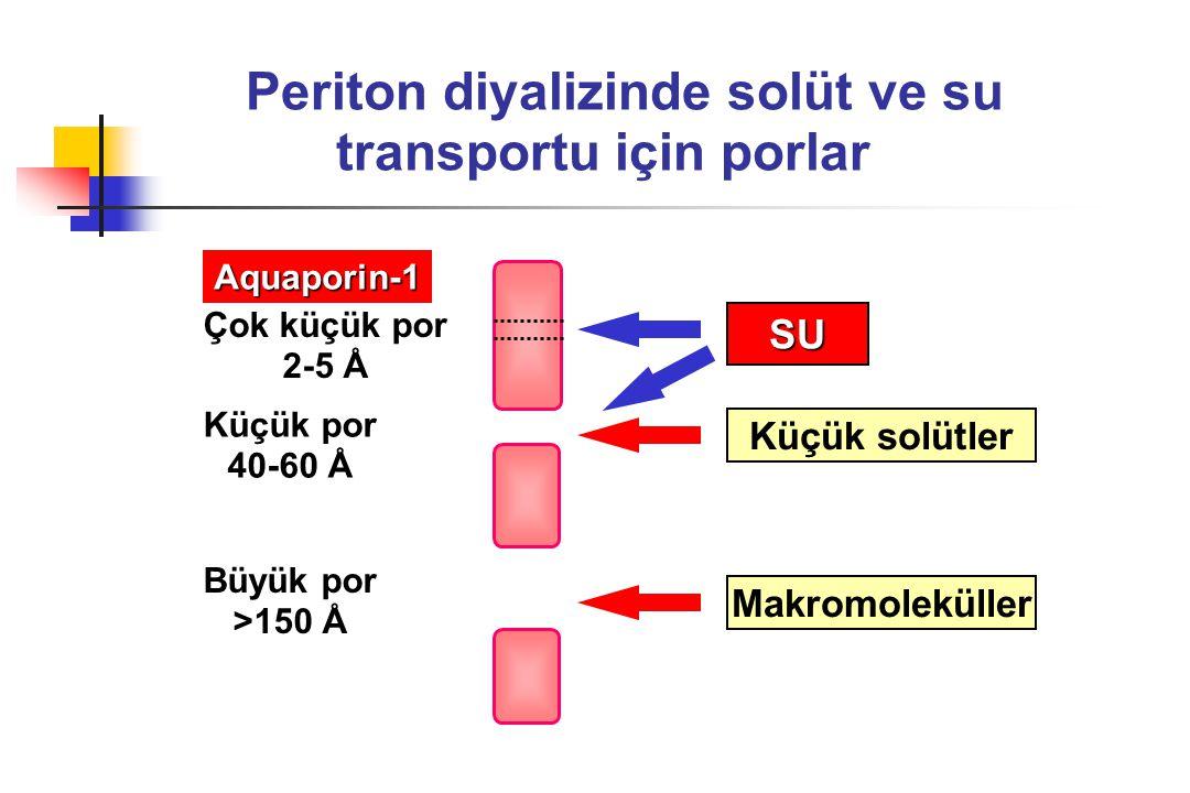 Periton diyalizinde solüt ve su transportu için porlar