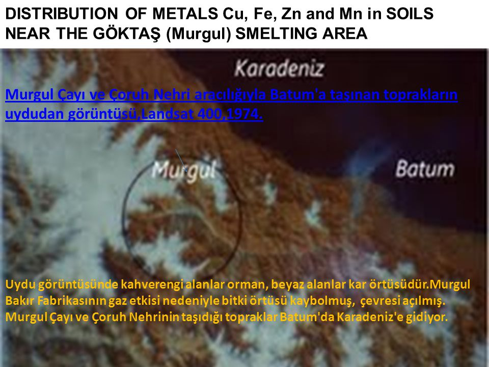 DISTRIBUTION OF METALS Cu, Fe, Zn and Mn in SOILS NEAR THE GÖKTAŞ (Murgul) SMELTING AREA