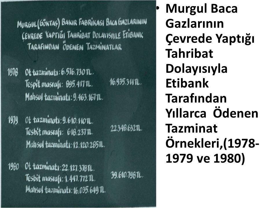 Murgul Baca Gazlarının Çevrede Yaptığı Tahribat Dolayısıyla Etibank Tarafından Yıllarca Ödenen Tazminat Örnekleri,(1978-1979 ve 1980)