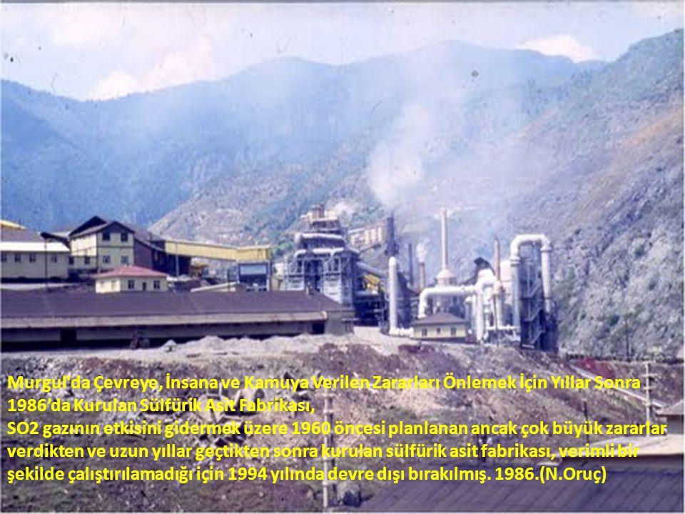 Murgul da Çevreye, İnsana ve Kamuya Verilen Zararları Önlemek İçin Yıllar Sonra 1986'da Kurulan Sülfürik Asit Fabrikası,