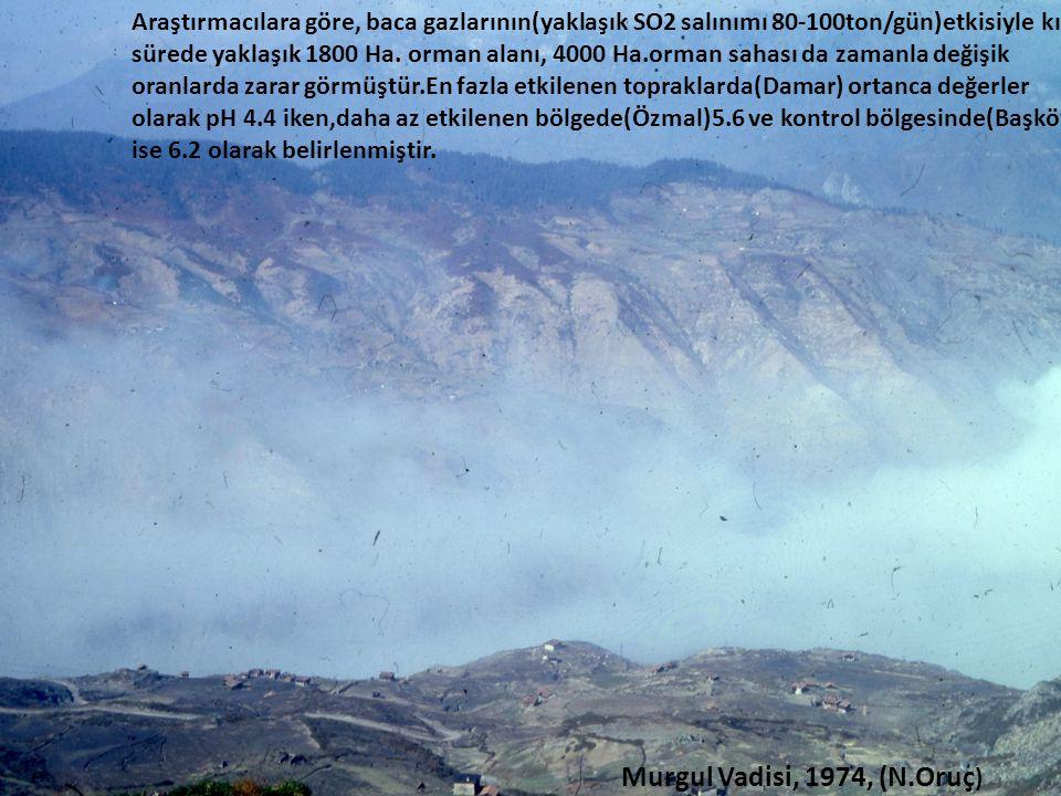 Araştırmacılara göre, baca gazlarının(yaklaşık SO2 salınımı 80-100ton/gün)etkisiyle kısa sürede yaklaşık 1800 Ha. orman alanı, 4000 Ha.orman sahası da zamanla değişik oranlarda zarar görmüştür.En fazla etkilenen topraklarda(Damar) ortanca değerler olarak pH 4.4 iken,daha az etkilenen bölgede(Özmal)5.6 ve kontrol bölgesinde(Başköy) ise 6.2 olarak belirlenmiştir.