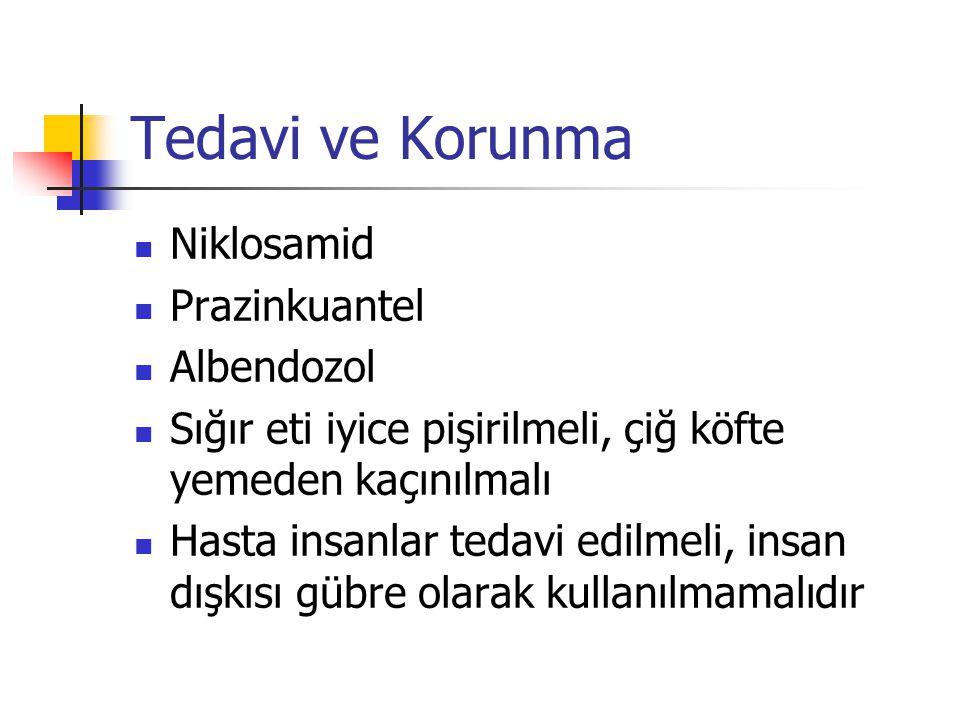 Tedavi ve Korunma Niklosamid Prazinkuantel Albendozol