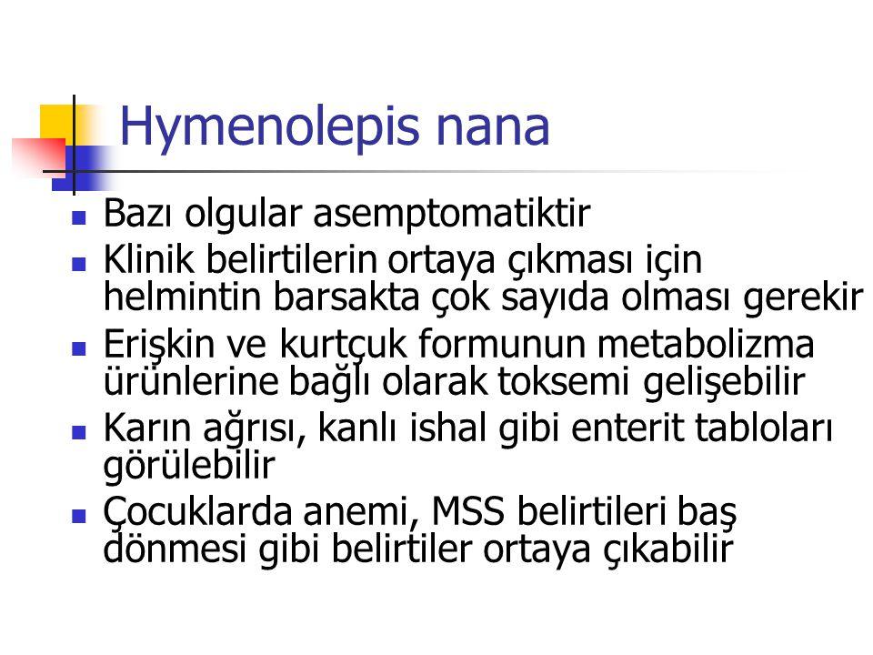 Hymenolepis nana Bazı olgular asemptomatiktir