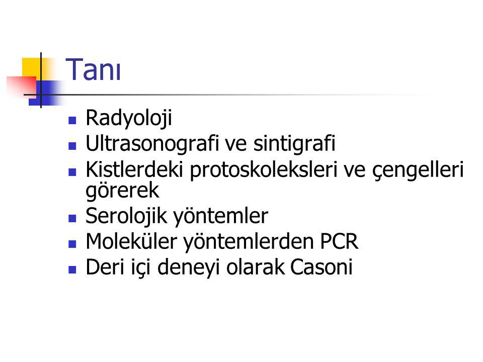 Tanı Radyoloji Ultrasonografi ve sintigrafi