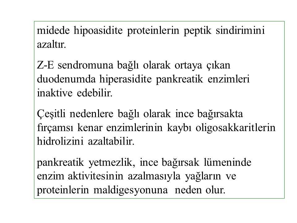 midede hipoasidite proteinlerin peptik sindirimini azaltır.