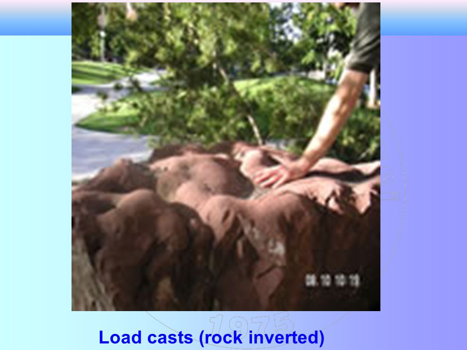 Load casts (rock inverted)