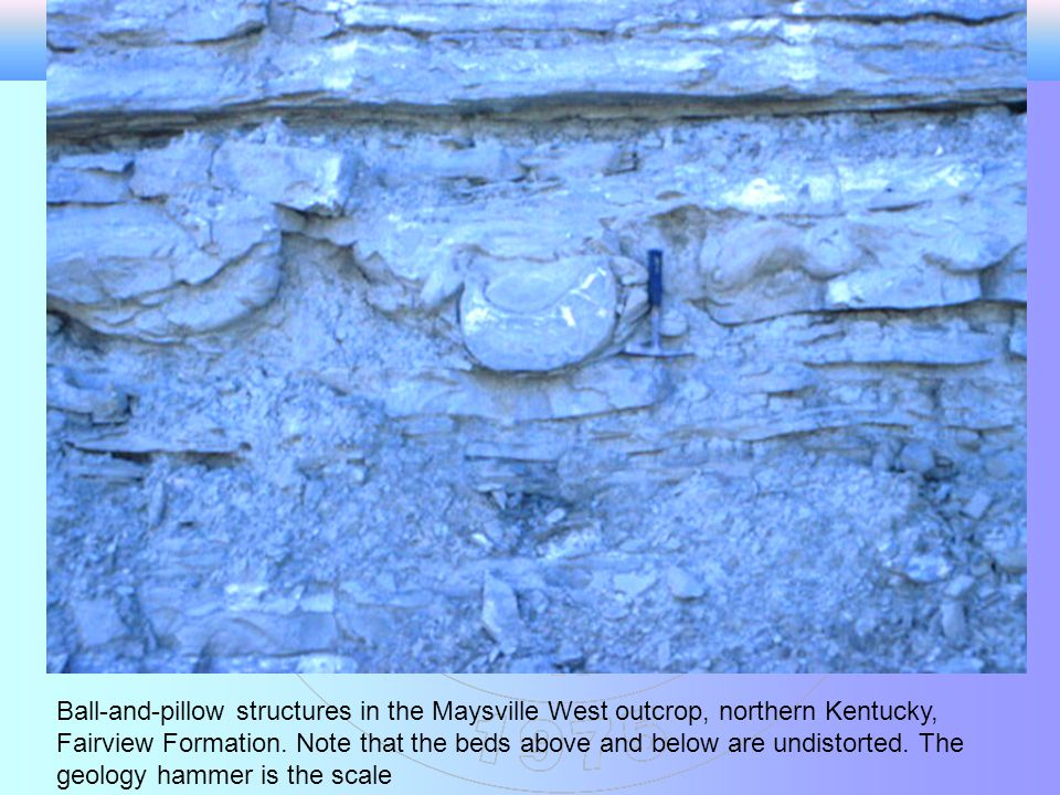 Ball-and-pillow structures in the Maysville West outcrop, northern Kentucky, Fairview Formation.