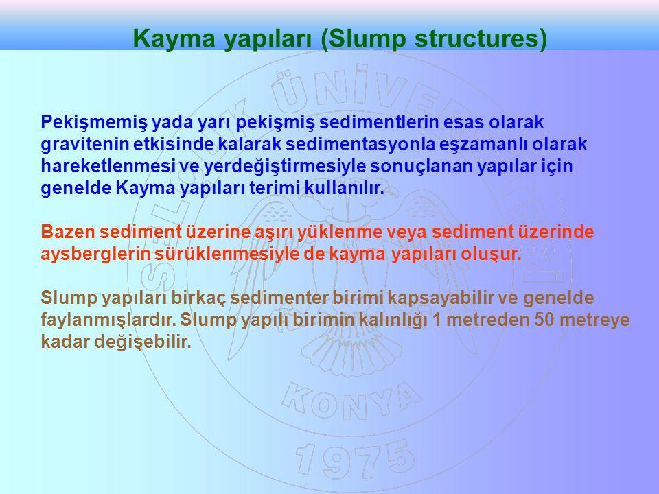 Kayma yapıları (Slump structures)