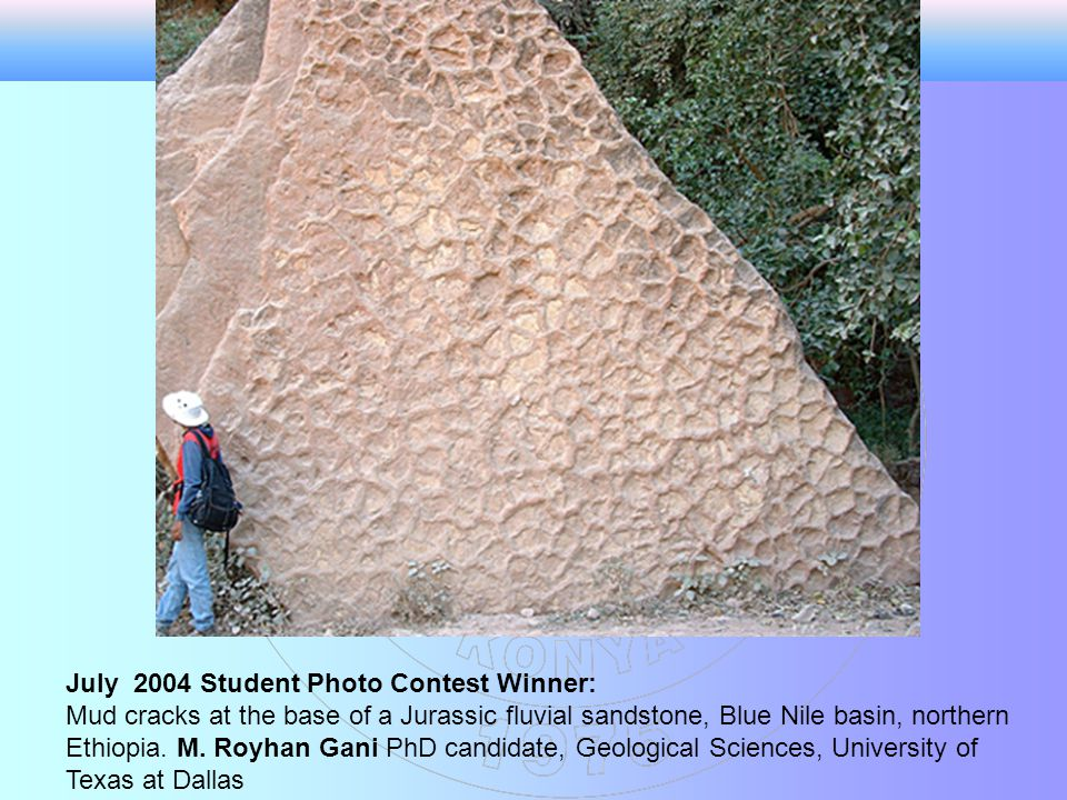 July 2004 Student Photo Contest Winner: Mud cracks at the base of a Jurassic fluvial sandstone, Blue Nile basin, northern Ethiopia.