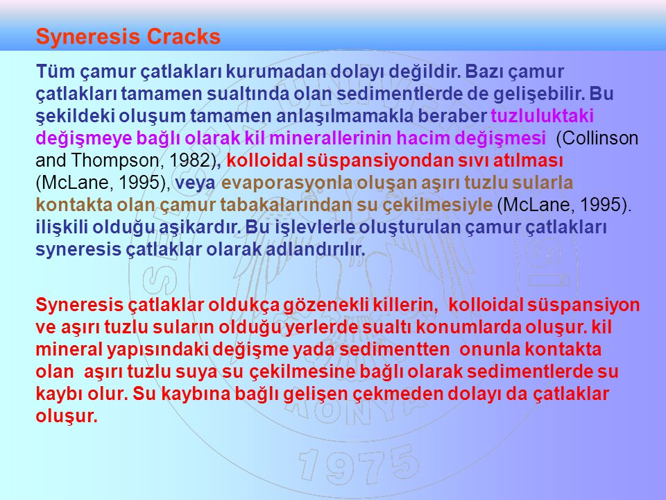 Syneresis Cracks