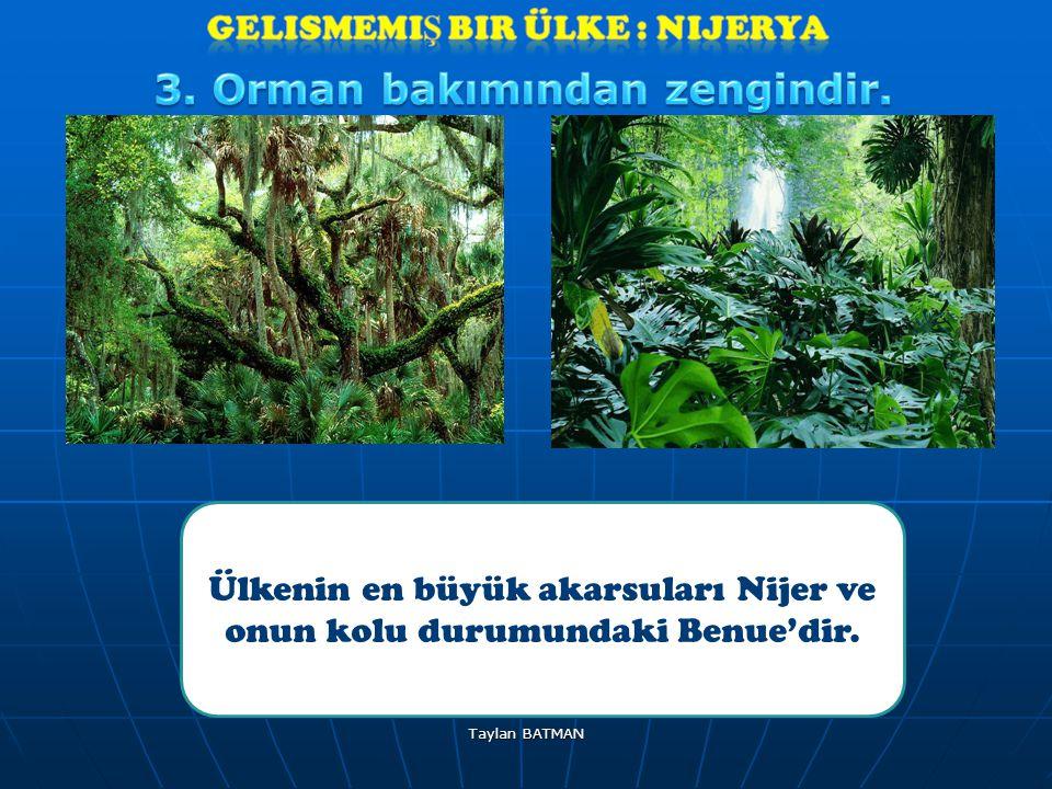 GeliSmemiş bir ülke : Nijerya 3. Orman bakımından zengindir.