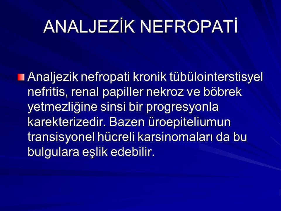 ANALJEZİK NEFROPATİ