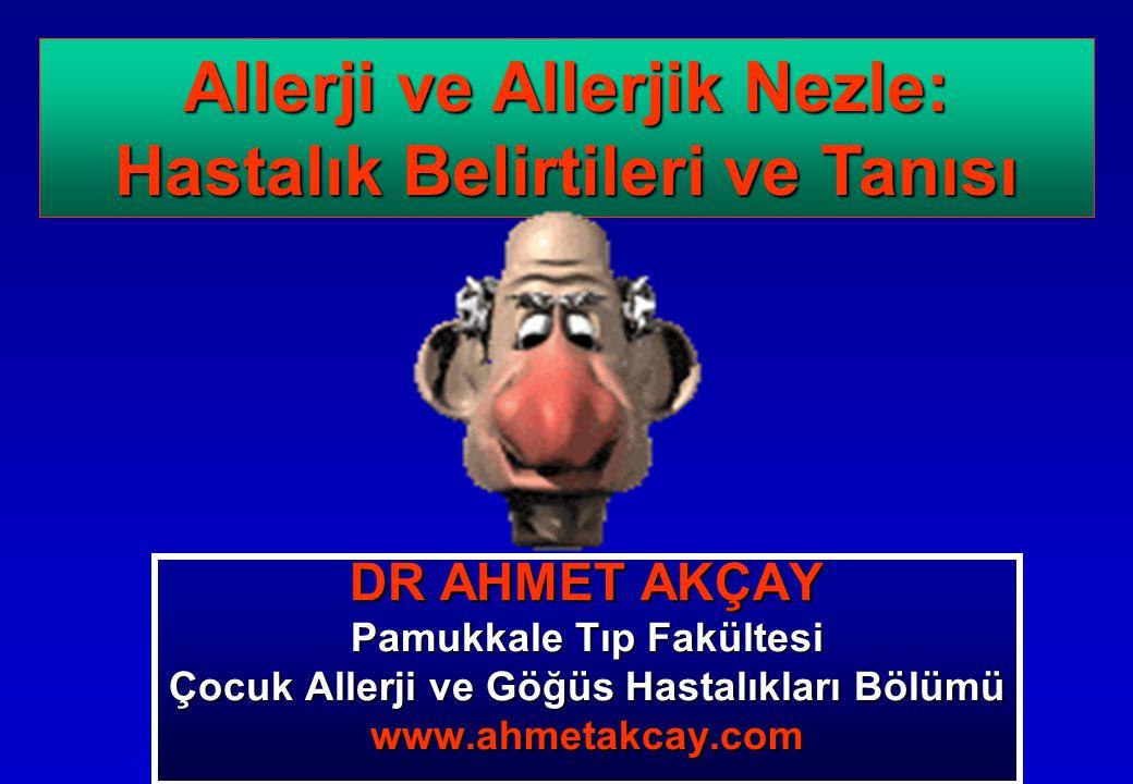 Allerji ve Allerjik Nezle: Hastalık Belirtileri ve Tanısı
