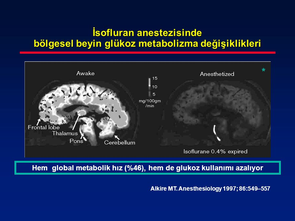 Hem global metabolik hız (%46), hem de glukoz kullanımı azalıyor