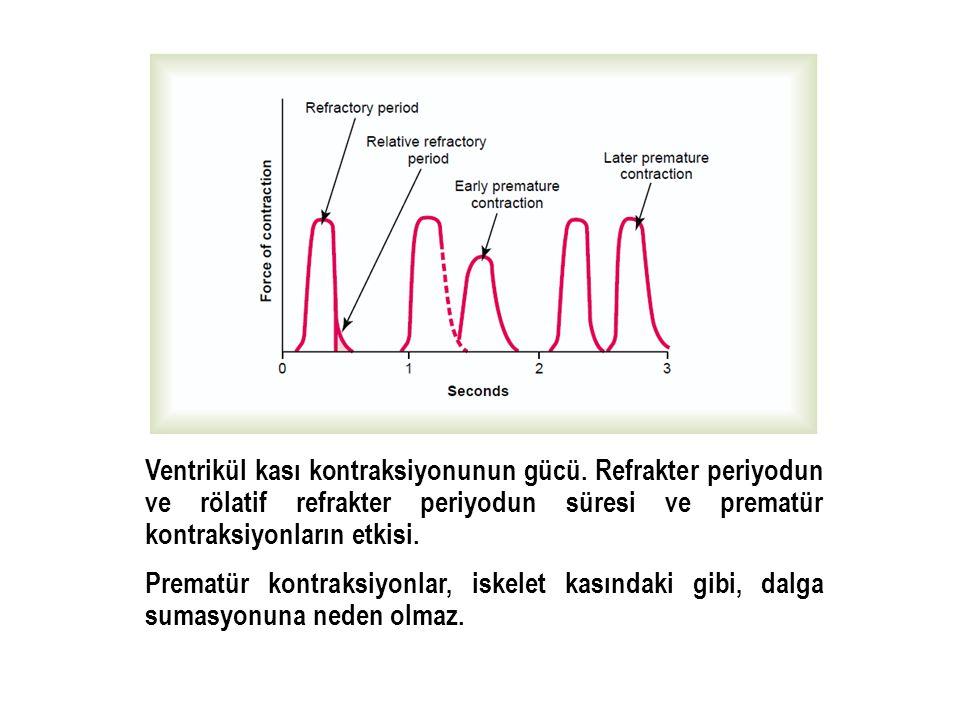 Ventrikül kası kontraksiyonunun gücü